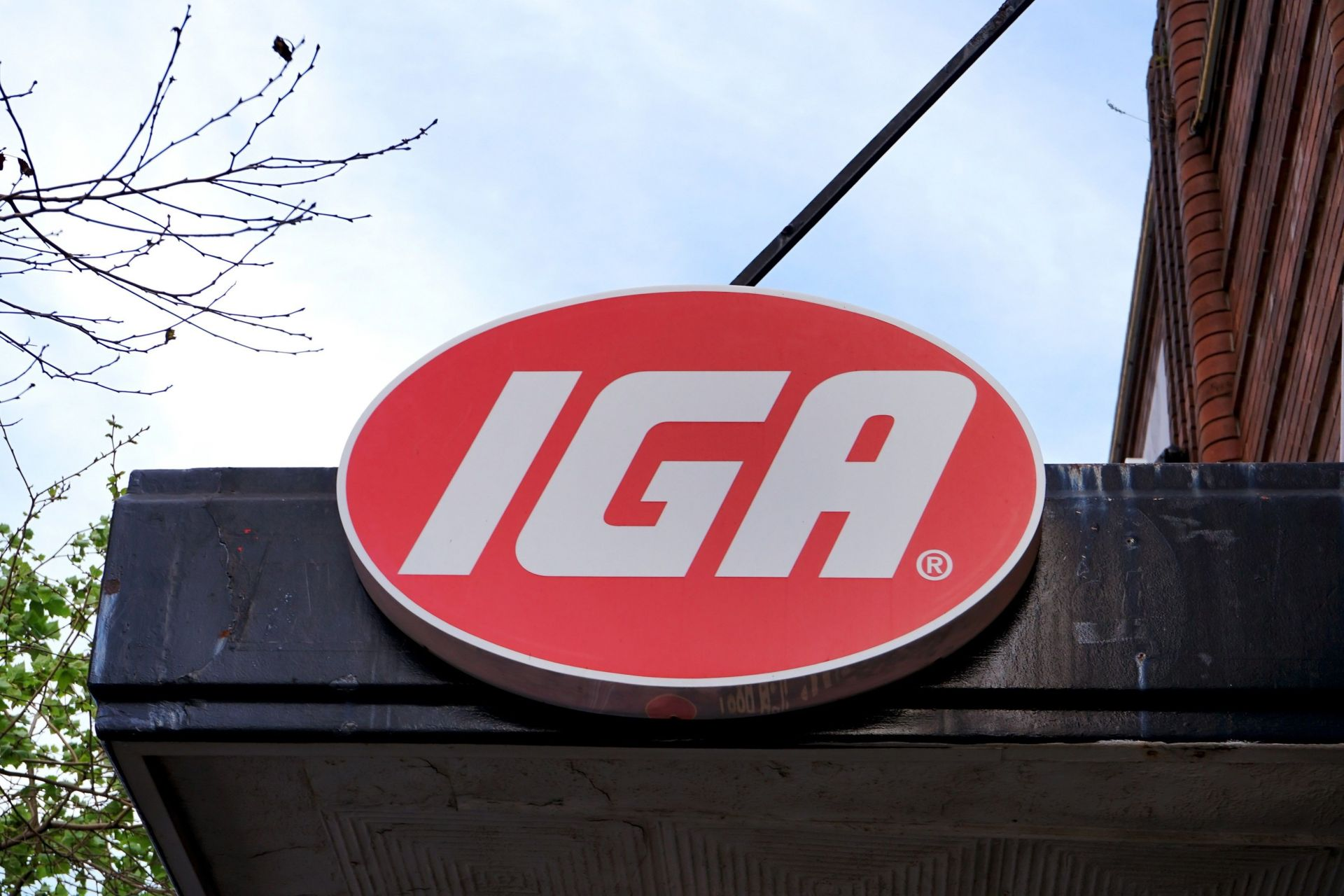 IGA parent company Metcash benefits from customers shopping locally | Inside Franchise Business Executive