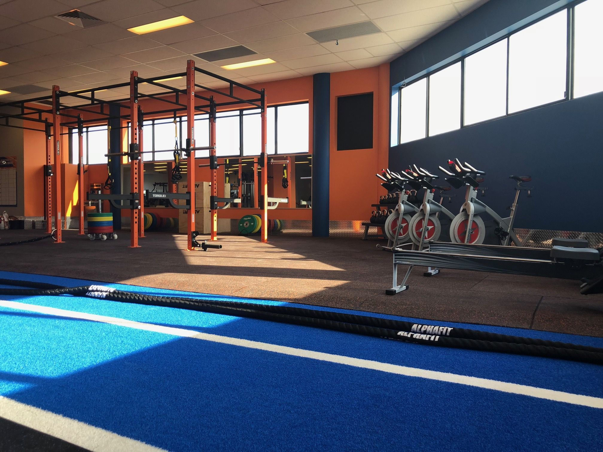 Viva Leisure remains reticent about Plus Fitness | Inside Franchise Business Executive